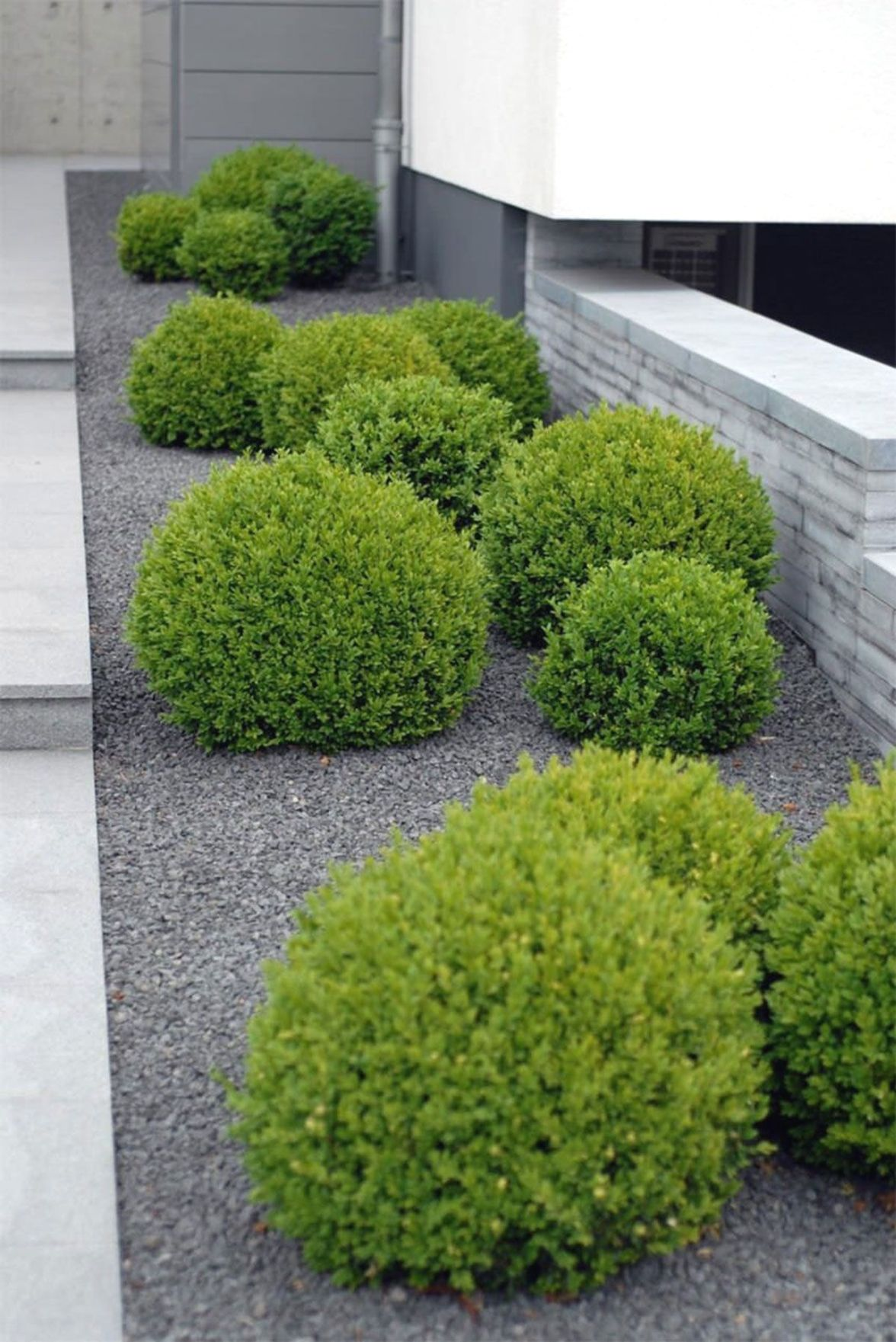 shade landscaping ideas zone 5   Small front yard ...