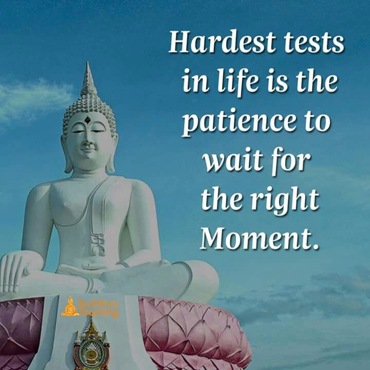 Patience To Wait For Right Moment Happy Pinterest Quotes