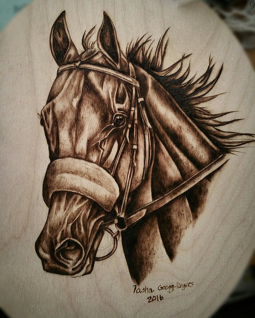Second attempt at pyrography this is american pharaoh