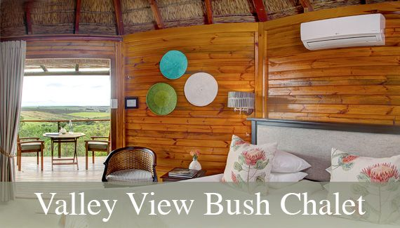 $380/night.  Includes two safaris.  View of watering hole where zebras and giraffes hang.  3 hours from Cape Town.