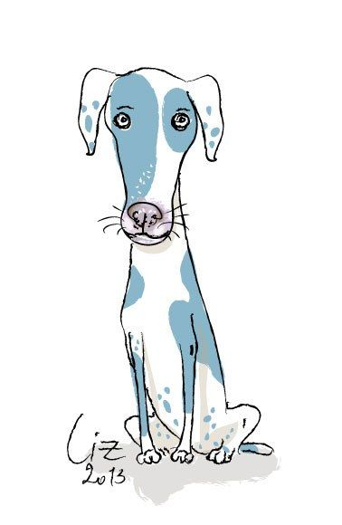 This Blue And White Dog Seems To Be A Cross Breed Of A Harlequin