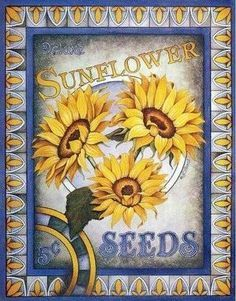 Vintage Sunflower Seed Pack Seed Packet Pics And Crafts