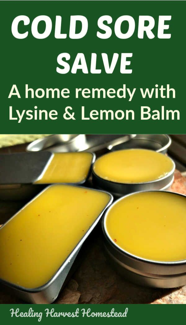 Photo of Cold Sore Salve Recipe with Lemon Balm and L-Lysine: Relieve Pain and Help Them Go Away FAST! — All Posts Healing Harvest Homestead