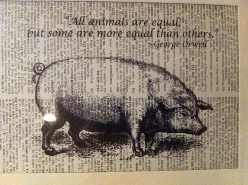 the morale of george orwells animal farm George orwell's 1946 novel animal farm uses the animals of manor farm as a metaphor for stalinism in order to demonstrate the corruption and dangers of a communist leadership.