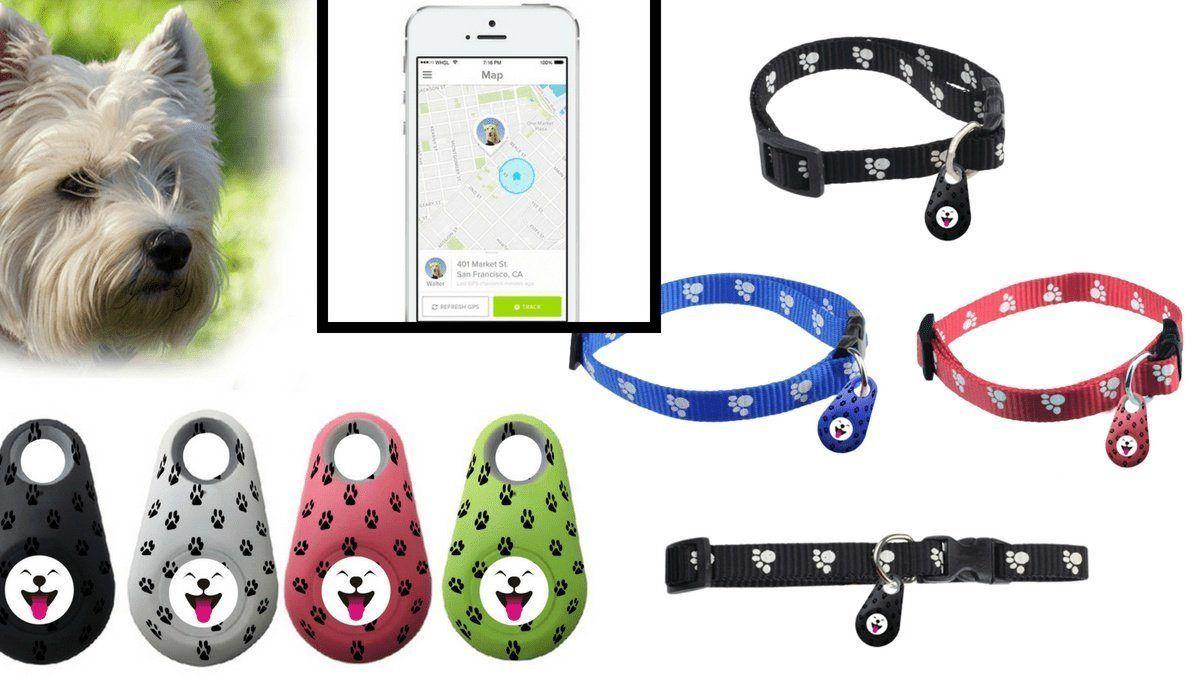 Description Waterproof Mini Smartphone GPS Dog Pet Finder