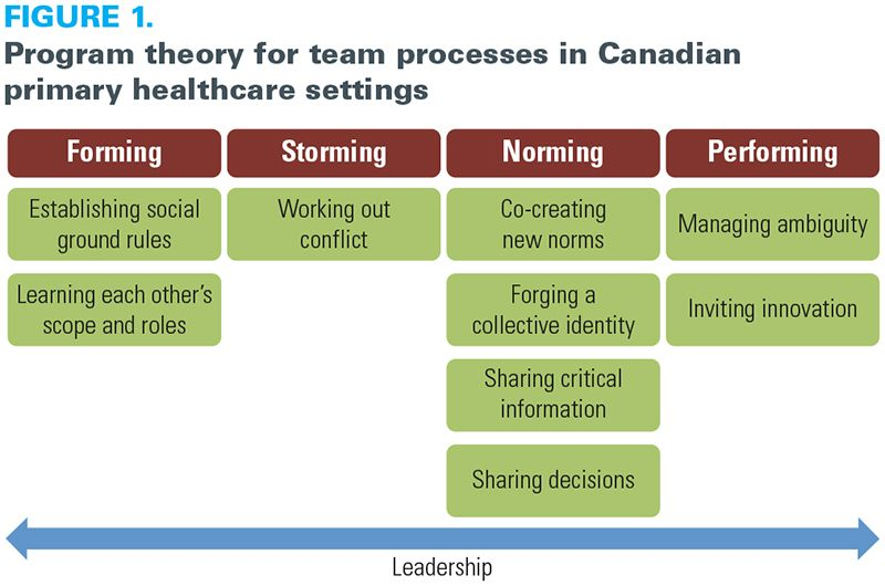 Team processes in canadian primary healthcare a realist