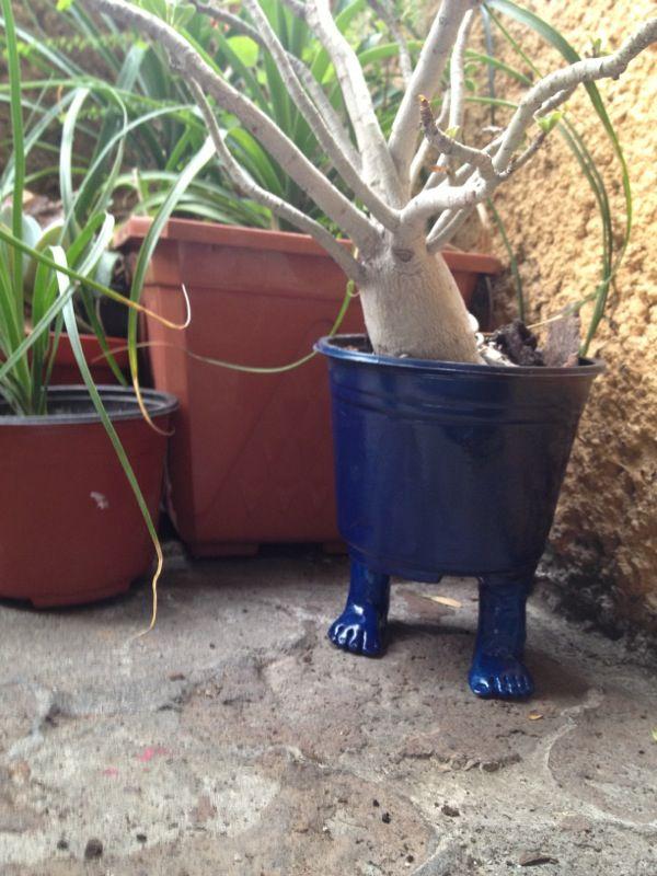 Walking pot by @cuapita