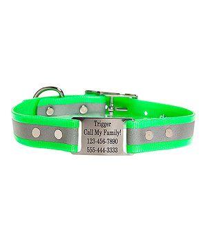 Look at this #zulilyfind! Green ScruffTag Reflective Personalized Dog Collar by dogIDs #zulilyfinds