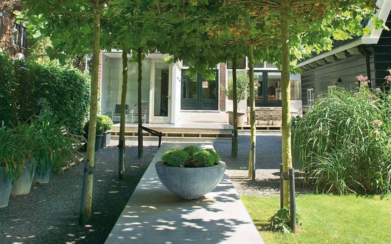 Foto 39 s van diverse aangelegde tuinen martin veltkamp tuinen martin veltkamp tuinen nl - Aangelegde tuin ideeen ...
