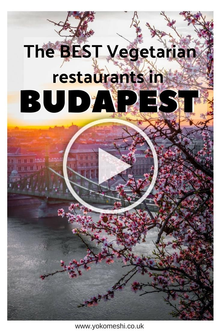 The best Vegetarian restaurants in Budapest Hungary A guide to the vegetarian and vegan friendly restaurants located in Budapest with downloadable Google map  Yoko Meshi