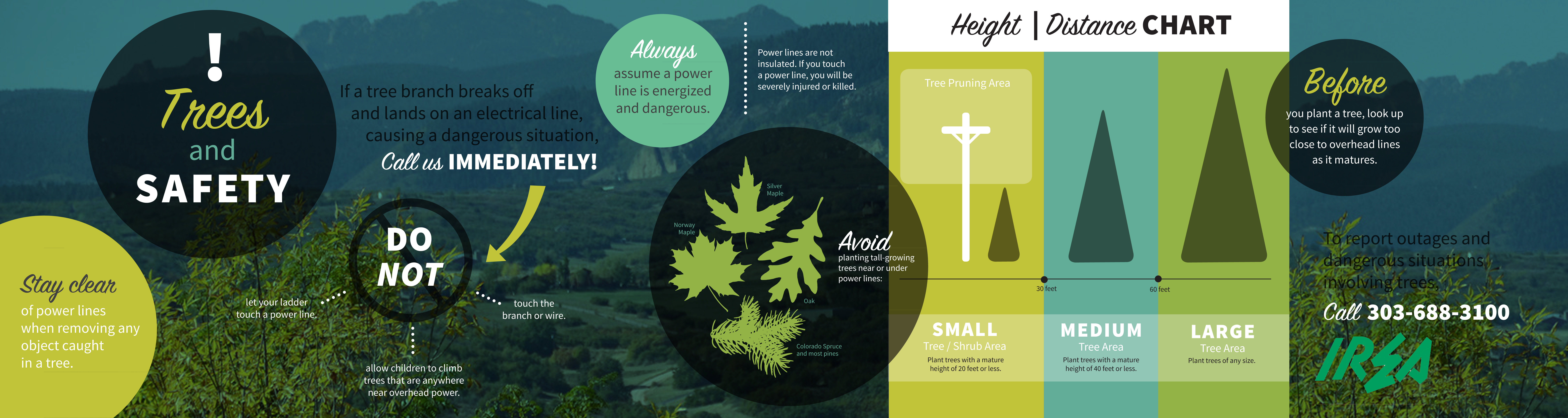 Trees & Safety: This is an Infographic for IREA--Intermountain Rural Electric Association.