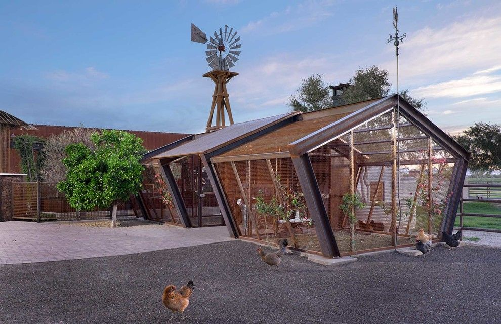 Baroque Chicken Coop Kit In Garage And Shed Contemporary With Attached  Greenhouse Next To Greenhouse Alongside Garden Shed And Dog Kennel