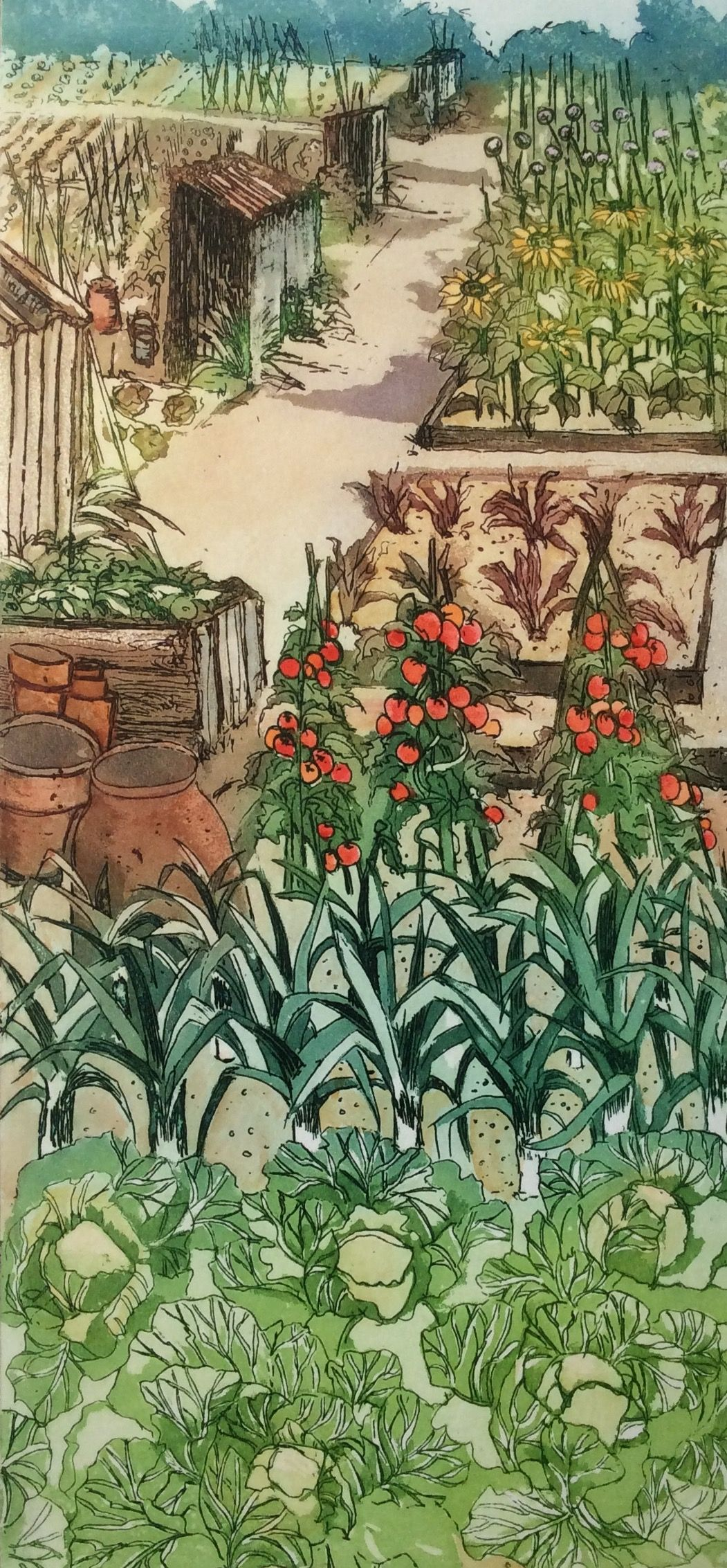perfect plot 2 etching with aquatint by sally winter