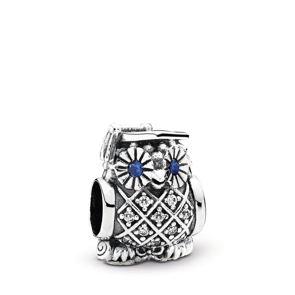 charme harry potter argent pandora