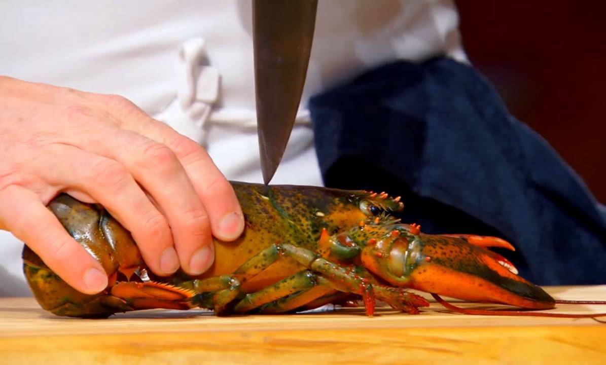 THIS is how to do a Lobster, the CORRECT way! Yum