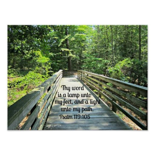 Psalm 119:105 Thy word is a lamp...
