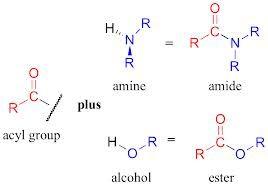 Acyl Group Organic Chemistry Chemistry Math