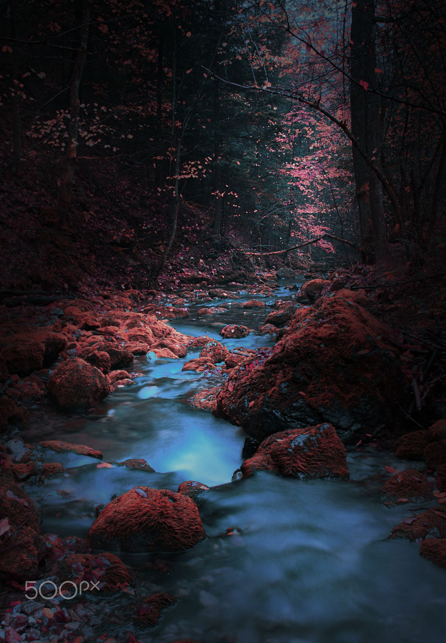 Pin By Ruben Almaraz On Creativ In 2020 Photoshop Digital Background Natural Scenery Photo Background Images