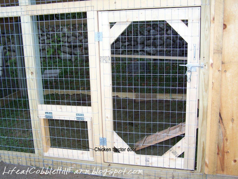 Coop screen door chicken diy building a chicken coop