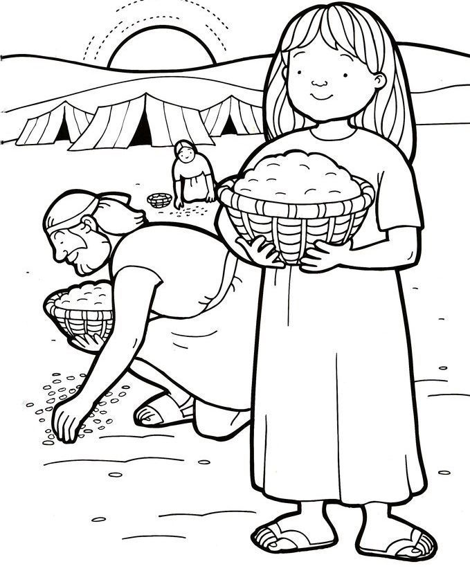 Manna And Quail Bible Coloring Page
