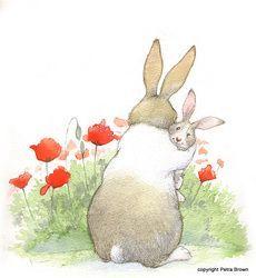 picture book hare colored - photo #36