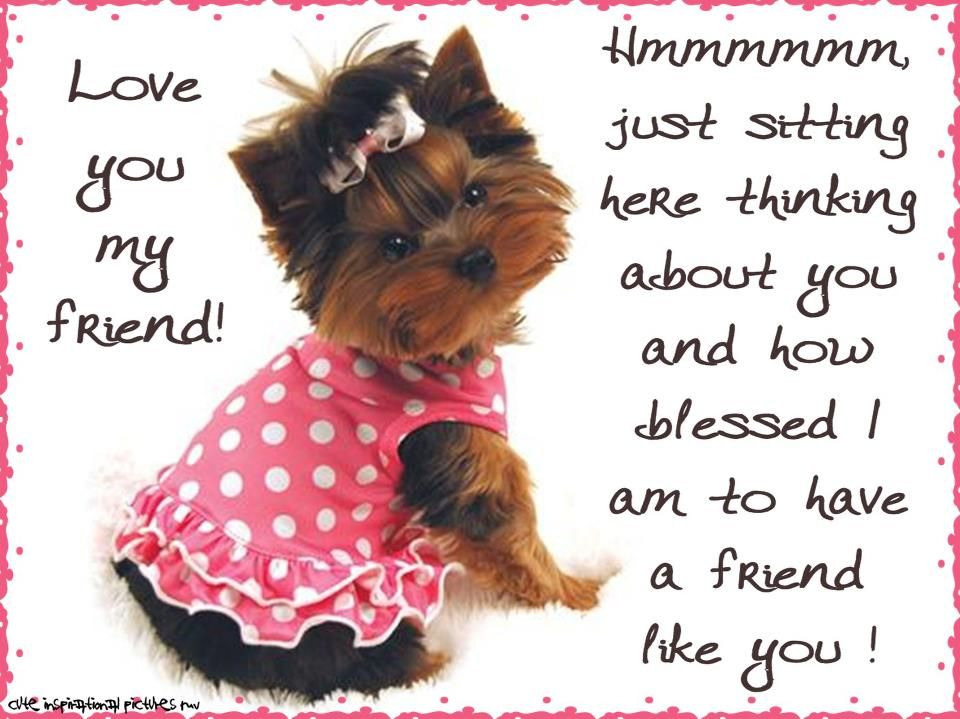 thinking of you friend quotes Love you my friend! ㋡