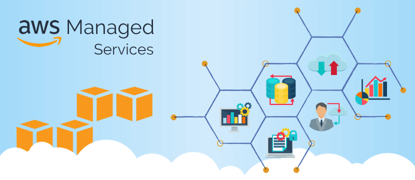 Aws Consultant And Managed Services Partner Cloud Computing Services Cloud Computing Technology Web Application