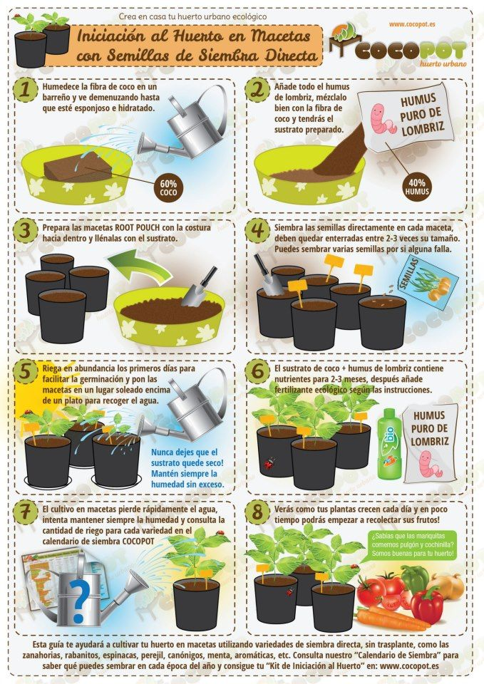 Huerto en macetas think green bio ideas pinterest for Semillas para huerto urbano