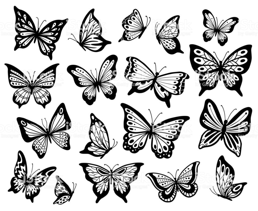Pin By Sherry Stephan On B W Butterfly Illustrations In 2020 Butterfly Drawing Butterfly Tattoo Butterfly Tattoo Designs
