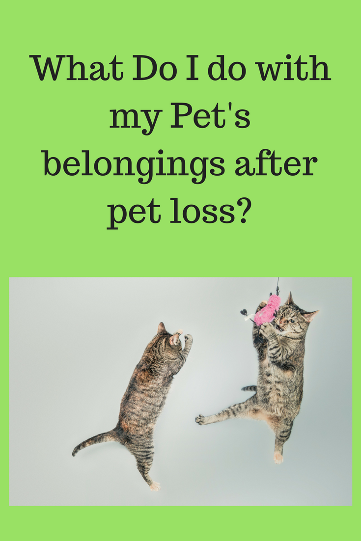 What do I do with my pet's belongings after they are gone