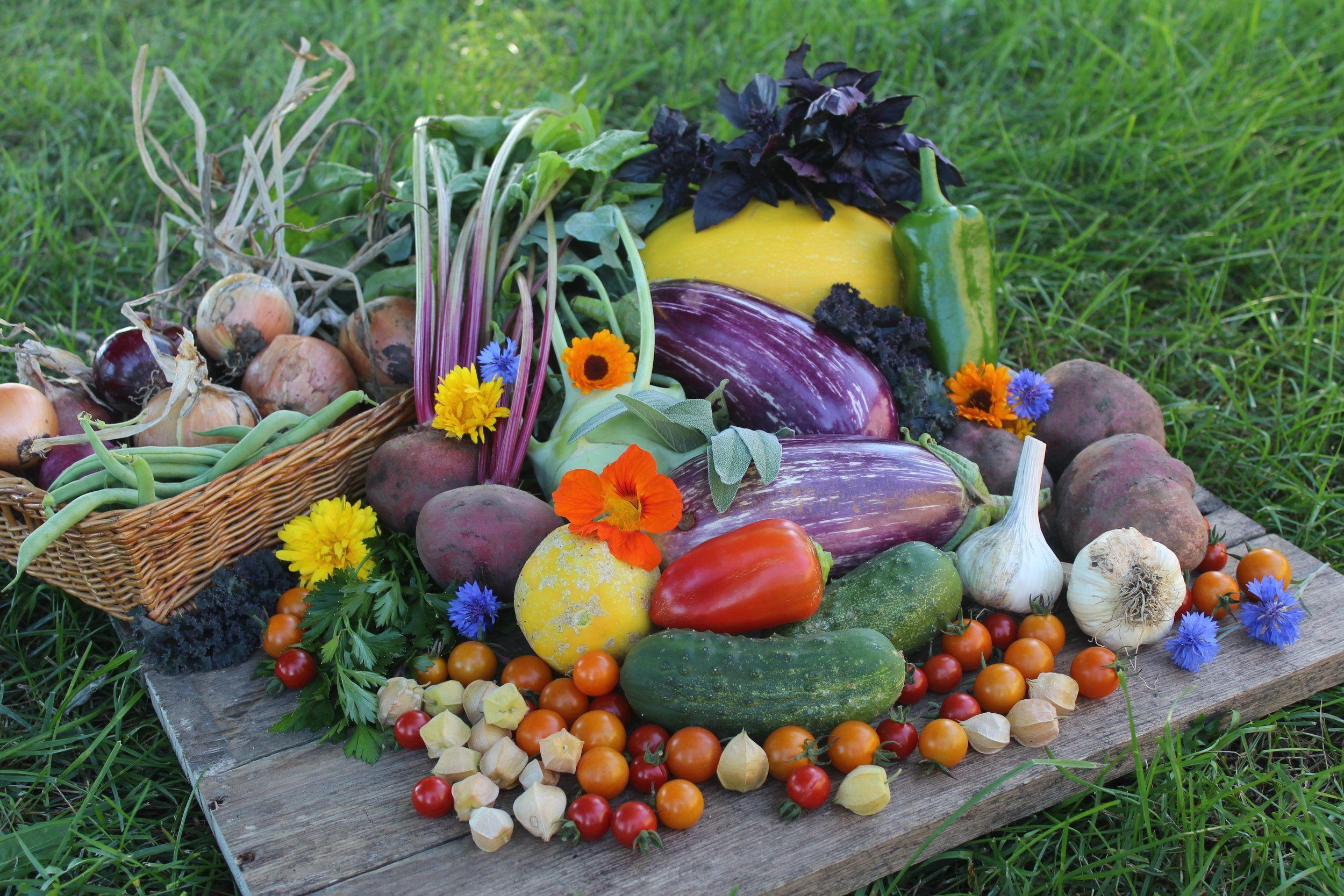 Glory garden south dakota online farmers market farm
