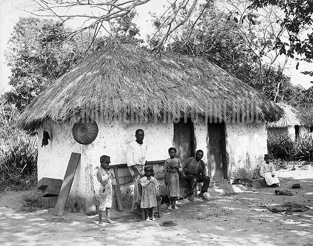 Ortoiroid Google Search Jamaica Jamaica History