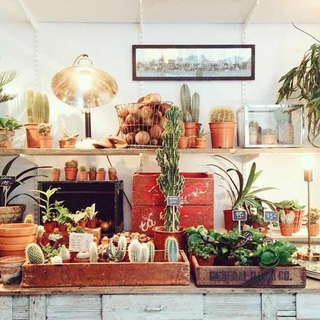 Trying to fit a whole shop into my hand luggage was sadly impossible  this place was a dream  by violetteblog - Pinned by @FancyAsMilly on instagram -