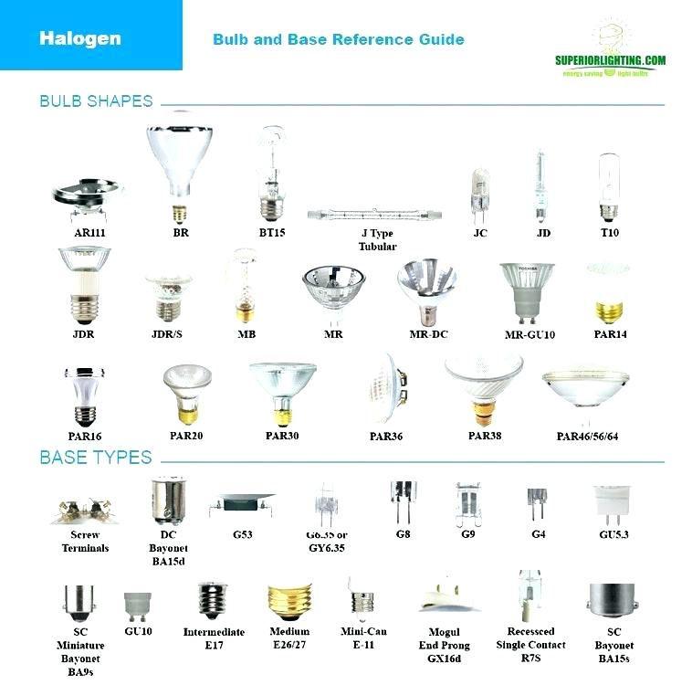 Type Of Light Bulb Bases Types Of Light Bulb Colors Led Light Bulb