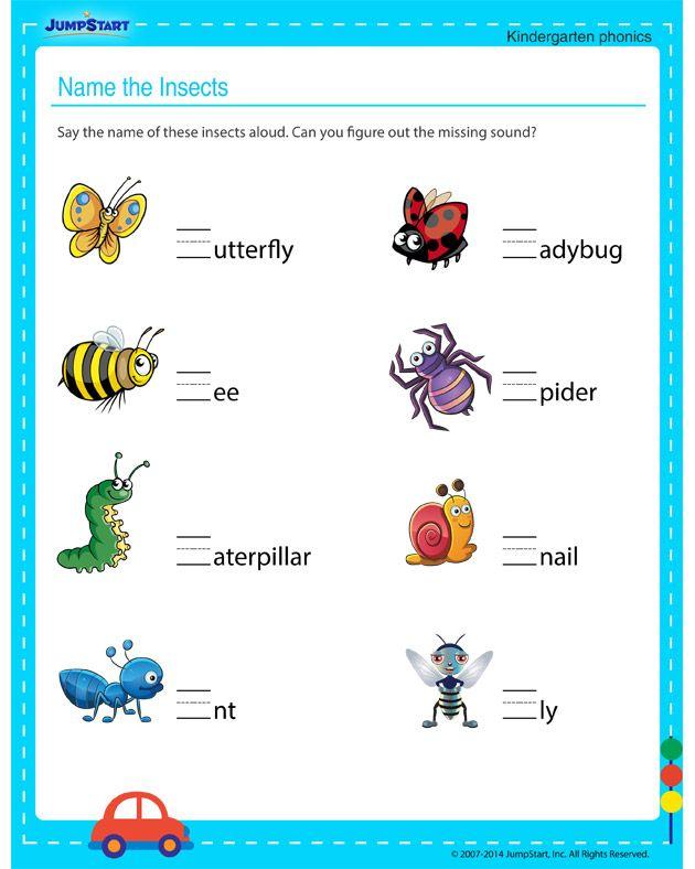 Name The Insects Free Worksheet For Kindergarten Kids Jumpstart Kindergarten Phonics Kindergarten Free Kindergarten Worksheets Insects worksheets for kindergarten