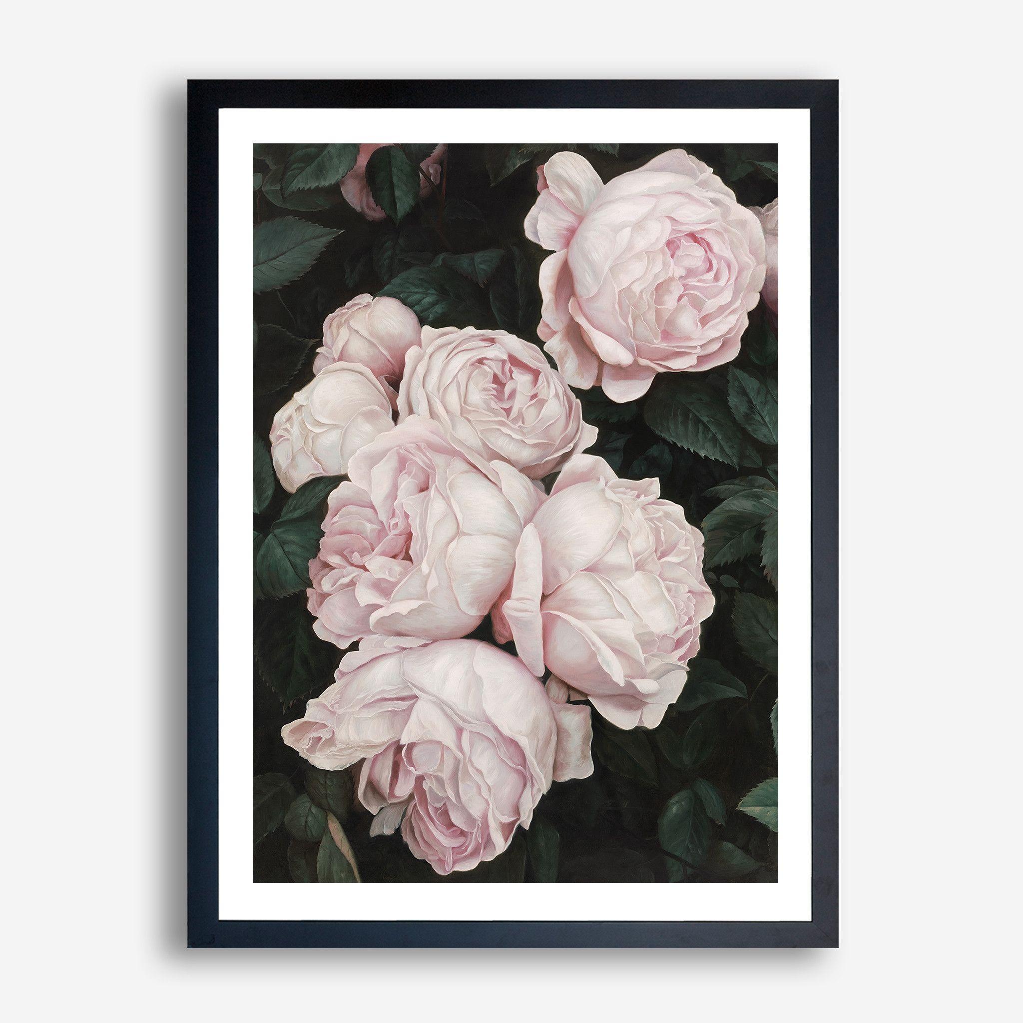 Pink roses art print by the print emporium theprintemporium com au