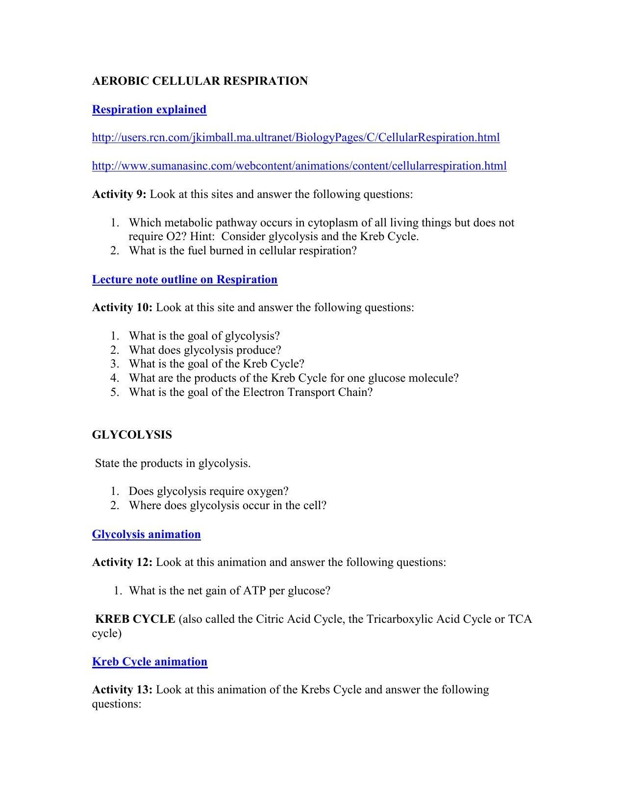 7 Formal Molar Mass Conversion Worksheet In