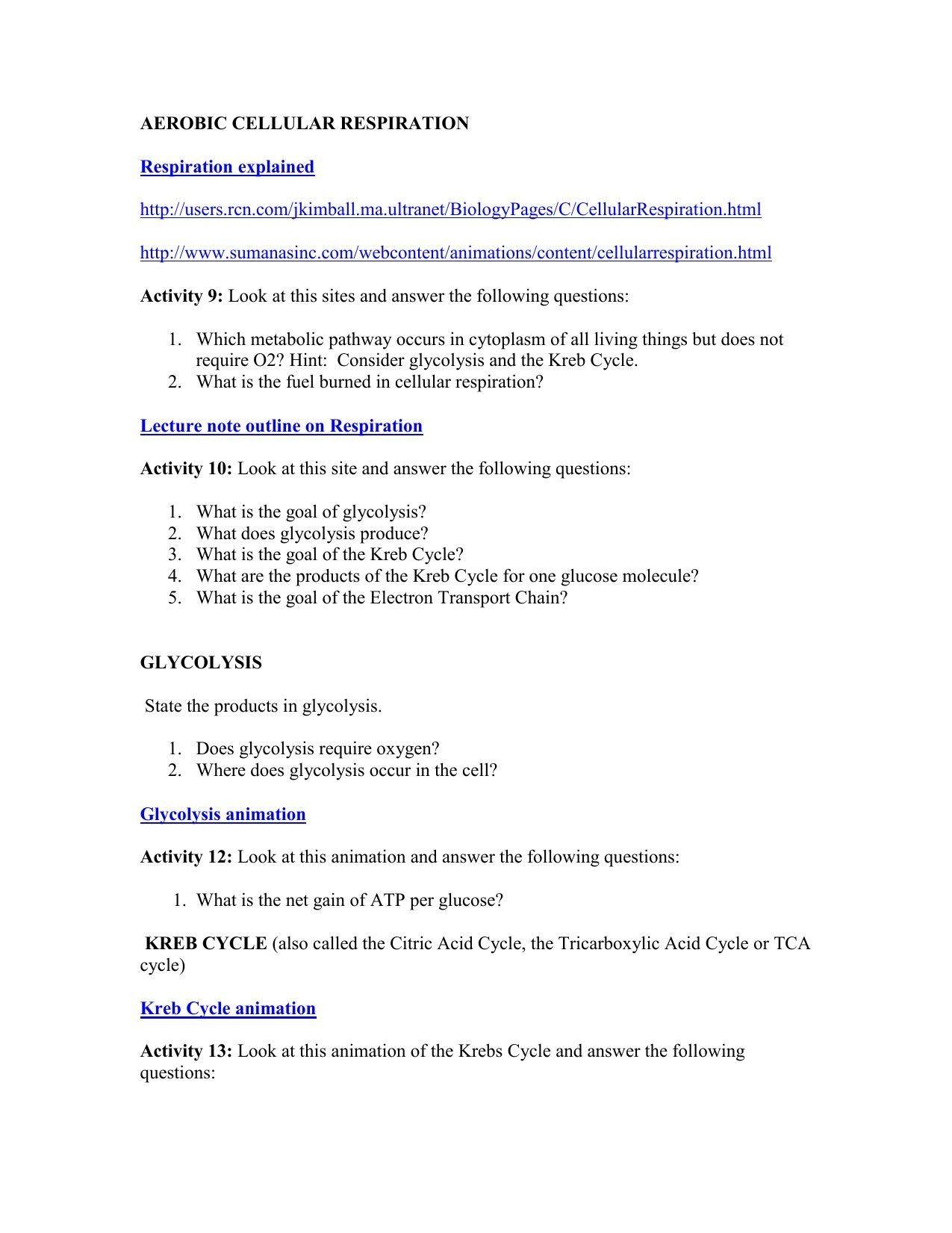 7 Formal Molar Mass Conversion Worksheet In