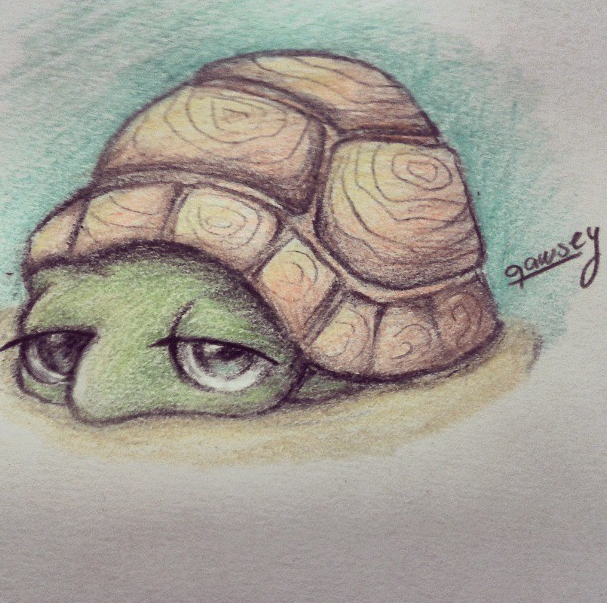 Cute Turtle drawing by qawsey Dibujos Pinterest Turtle