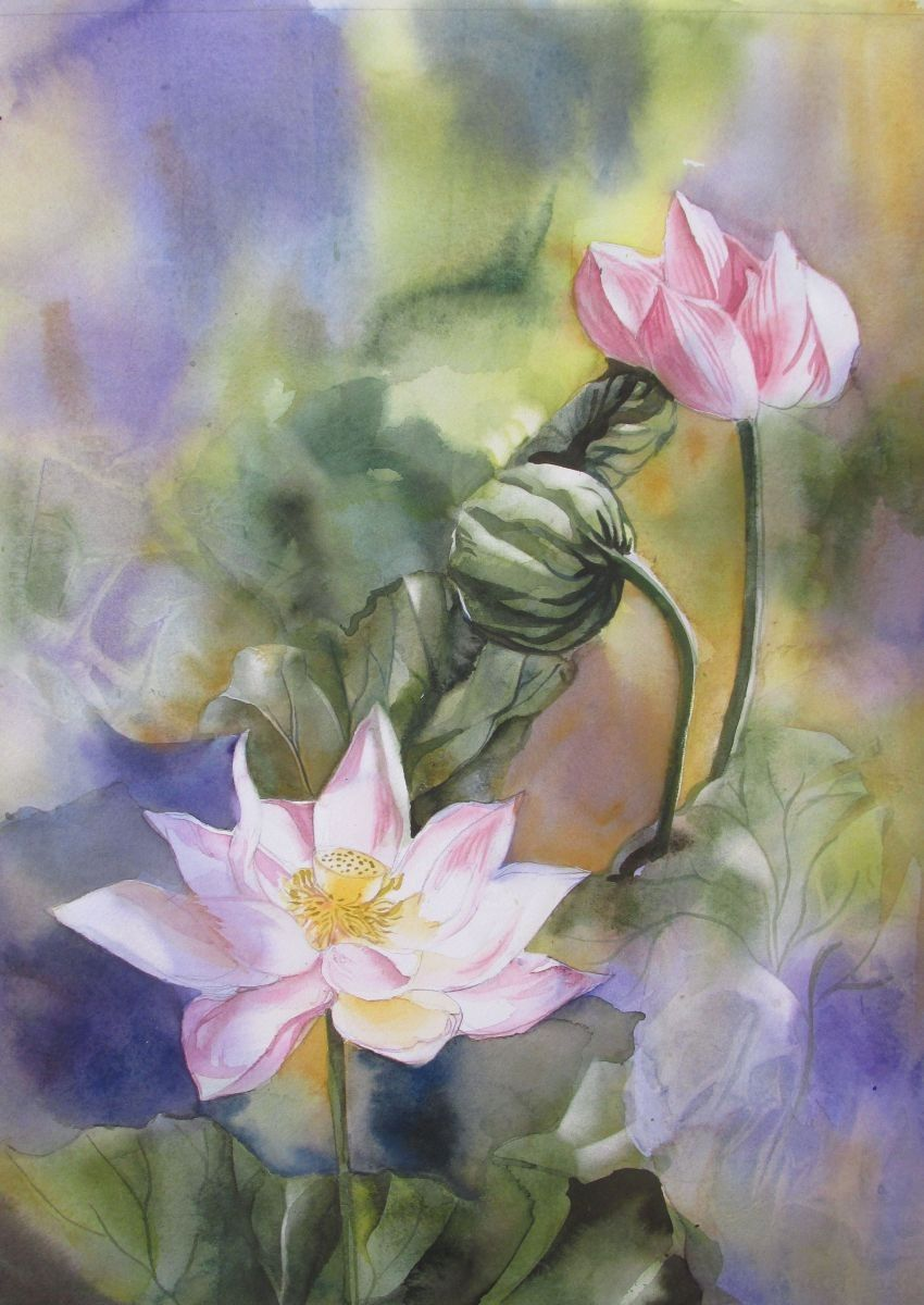 Lotus watercolor miss kasie pinterest spiritual awakening the exquisite beauty of the lotus flower has an important meaning in chinese culture the lotus is known to be associated with purity spiritual awakening izmirmasajfo