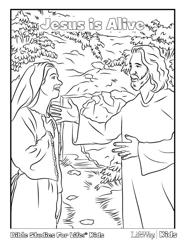 Lots of coloring pages from LifeWay - creation, Easter | Printables ...
