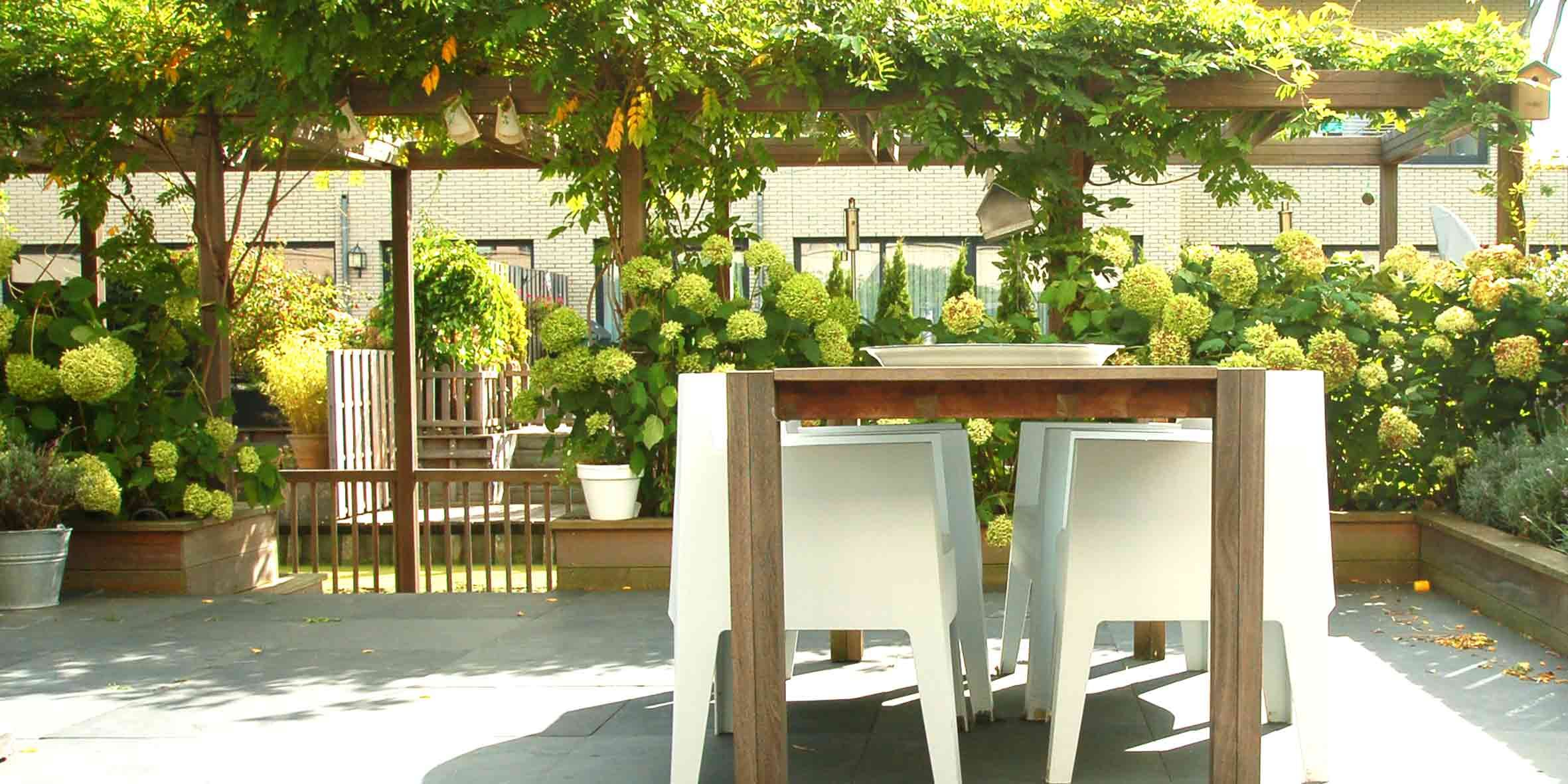 Pergola begroeit met blauwe regen in hoorn pergola in de tuin pinterest tuin pergolas - Bedekking voor pergola ...