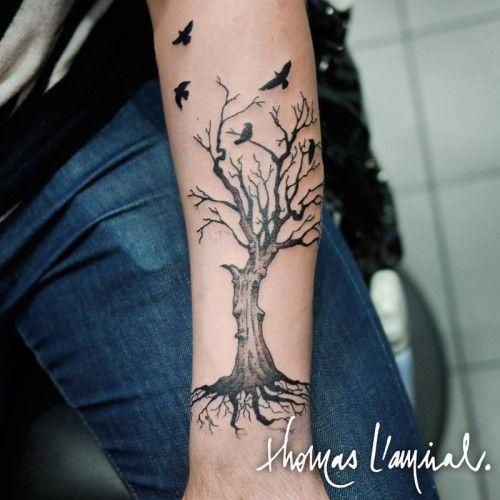 Tatouage Arbre Avec Oiseaux Avant Bras Homme Tattoos Tattoos