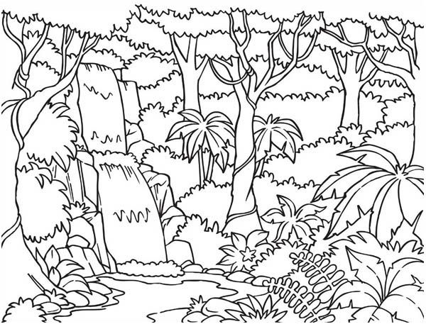 Forest and waterfalls coloring 600 457 for Waterfall coloring page