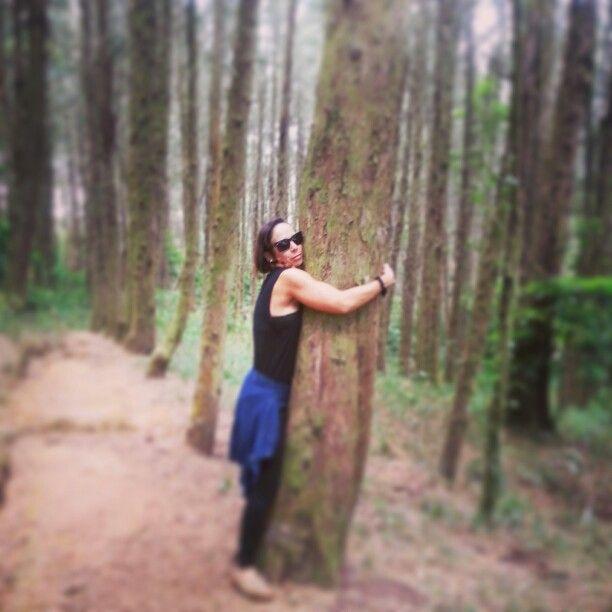 Bosque del Niño, Costa Rica ♥