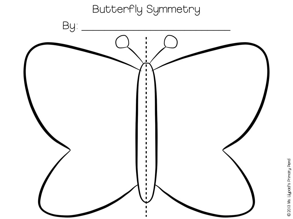 Ideas For A Life Cycles Unit Life Cycles Butterflies Activities