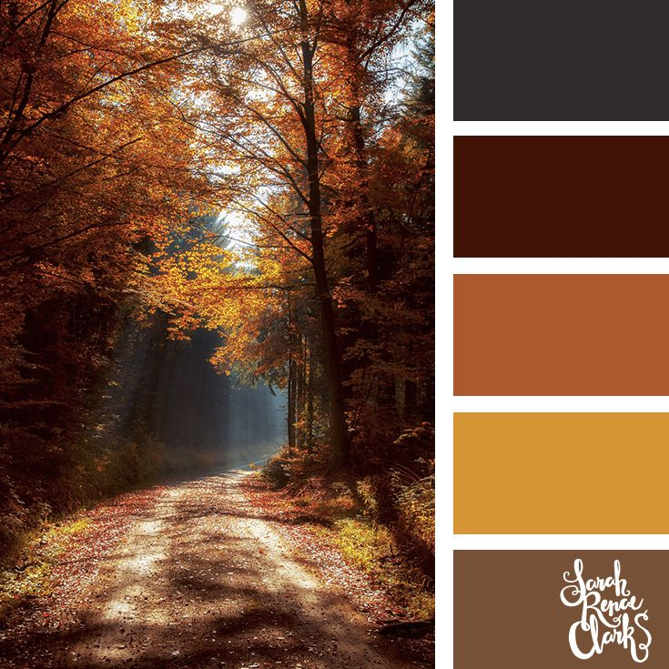 25 Color Palettes Inspired by the Pantone Fall 2017 Color Trends #autumnseason