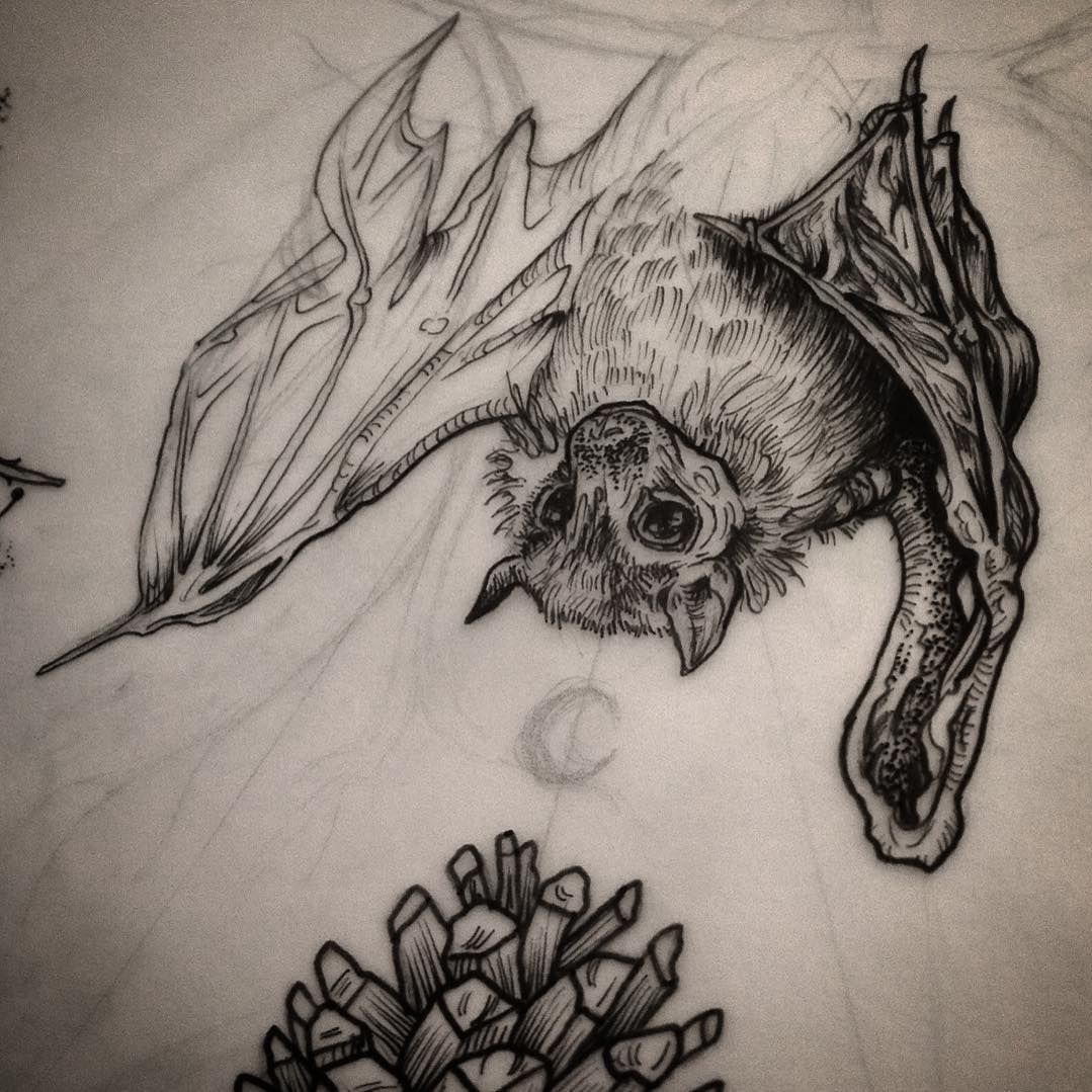 Sketchy Fruit Bat. Designs On The Way... #rustic #illustration #illustrative #fauna #bat #earthy ...