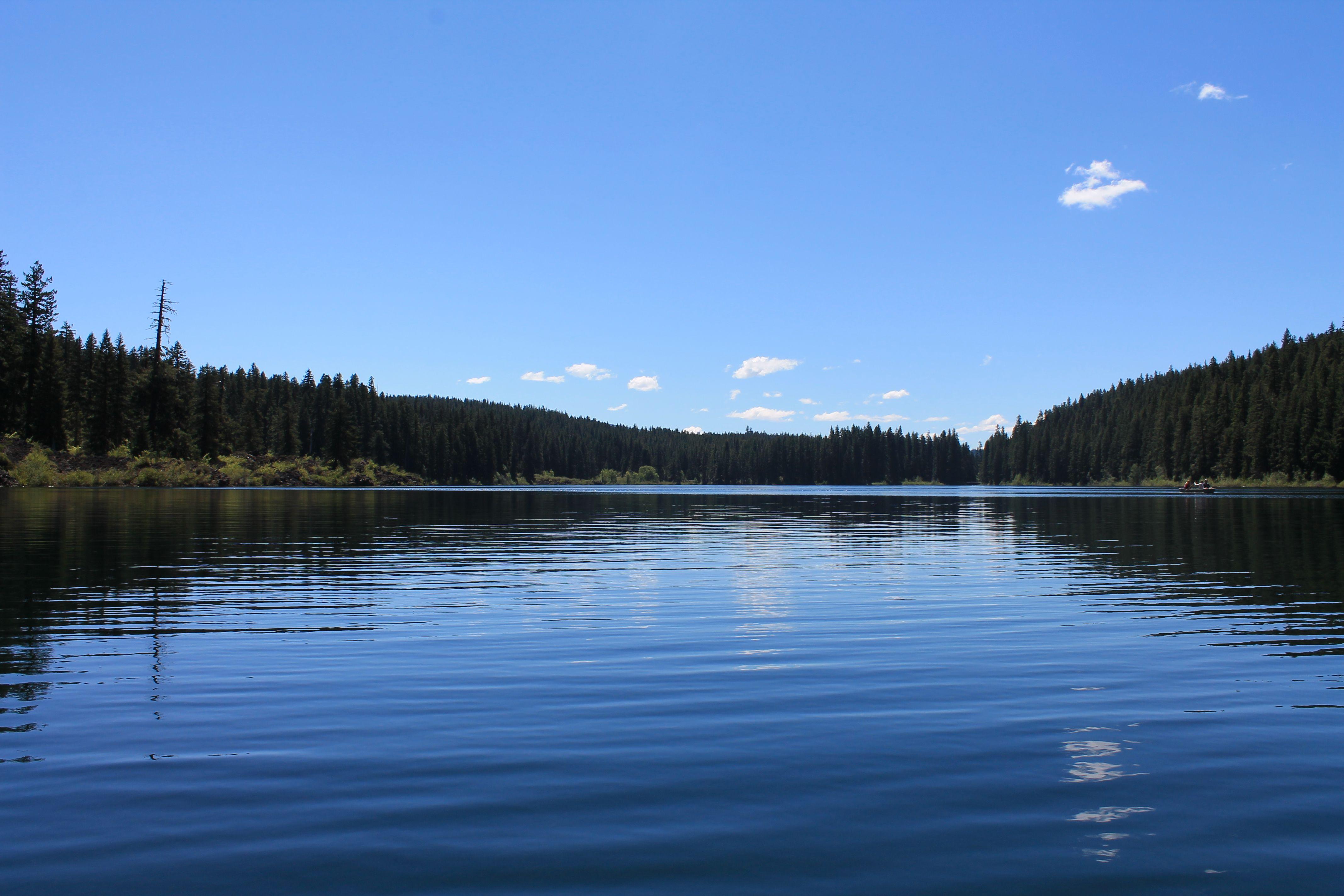 Clear Lake. McKenzie River. Hiking in Oregon. 4.6 mile