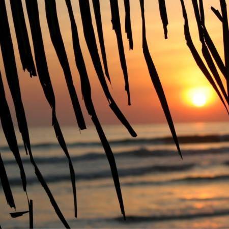 Die besten Wellen, die schönsten Sträsurfnde – wir zeigen dir wo du im Winter die besten Spots zum Surfen findest.